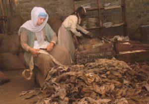 Foto Cartiera Medievale della Gaita San Giovanni 2009